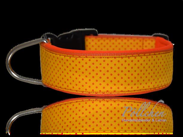 gepunktetes Halsband in orange mit Neoprenunterfütterung