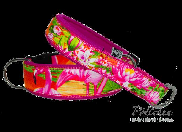 Halsband mit Neopren für Hunde in knalligen Farben mit Steckverschluß oder als Zugstopp-Halsband