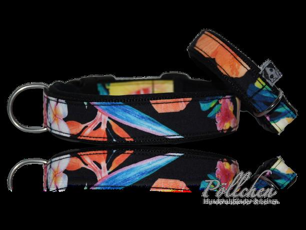 buntes Halsband XS - XL mit passender Leine - tropischer Stil