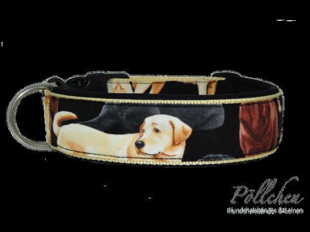 Hundehalsband mit Labradoren in blond, braun und schwarz
