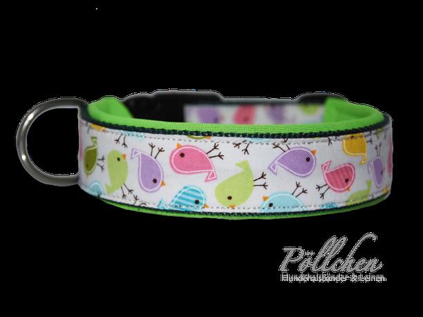 Hundehalsband mit bunten Vögeln auf Maß mit Verschluss oder Zugstopp mit passender Leine