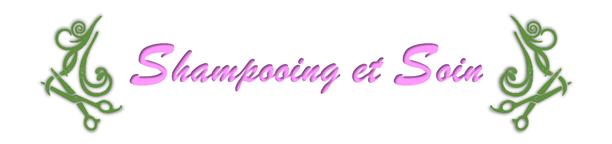 Logo Shampooing et soin