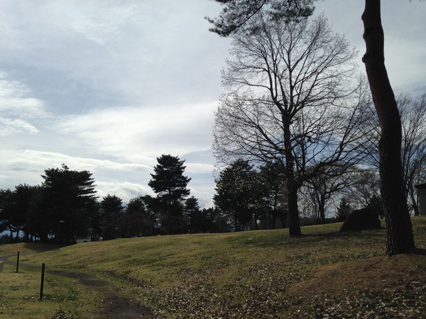 雪窓公園の芝生