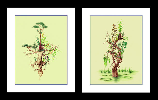 fantasy art, fantasy drawings, drawings by Spanish artists, fantasy landscapes, surrealist drawings, drawings of plants, ballpoint pen drawings