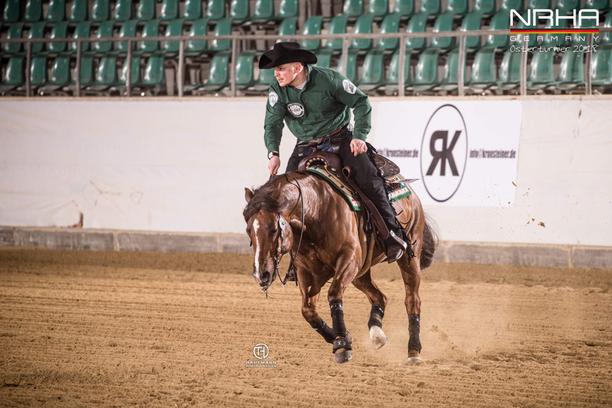 News Nebel Performance Horses Webseite