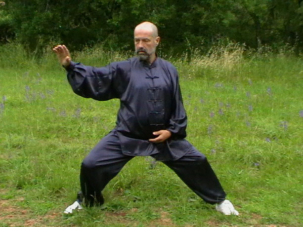 Philippe DELAGE - Forme Xinjia - Tai Chi style Chen selon l'enseignement de Maître WANG Xi an