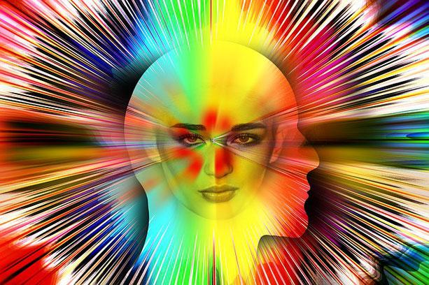 Das Bewusstsein