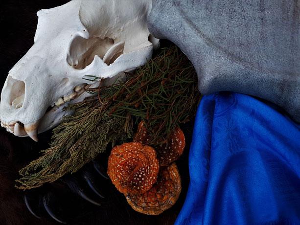 Fliegenpilz Räuchern Räucherwerk Räucherstoff Amanita muscaria Räucherung Ritual Naturritual Räucherritual Schamanismus fly agaric incense Samhain Jahreskreis