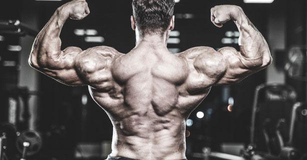 Rückenansicht eines Bodybuilders