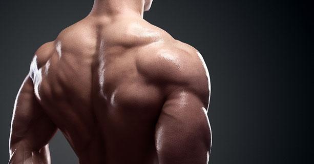 Ansicht eines Rücken von einem durchtrainierten Athleten