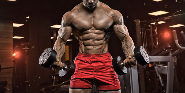 Training Bodybuilding mit Hanteln