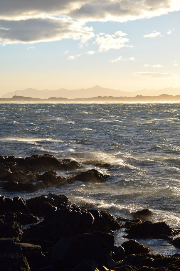 windy sea, East Fjords, Iceland