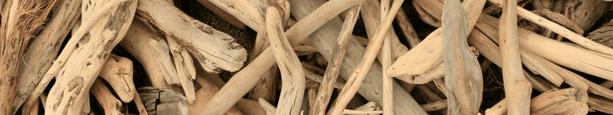photo large présentant des morceaux de bois flotté éparpillés et entremêlés