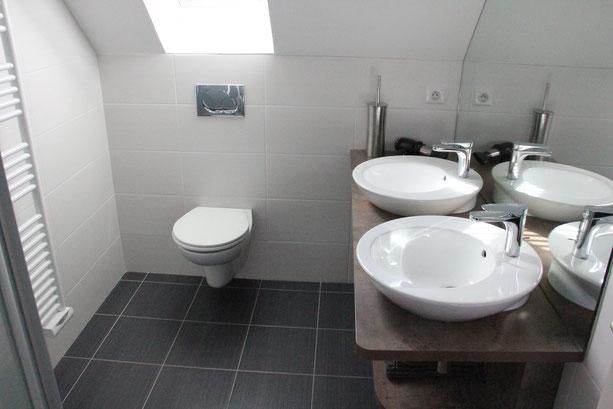 La salle d'eau de la location possède une douche