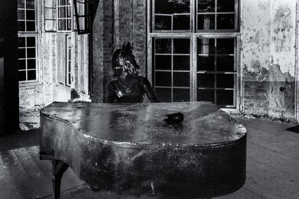 Piano Pony (c) Benjamin Lippke
