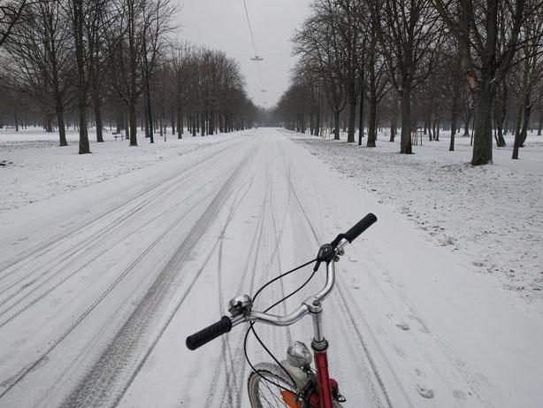 ... aber manchmal schneits dann doch