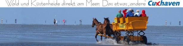 Das etwas andere Cuxhaven