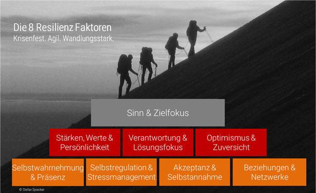 Die acht Resilienz Faktoren. Krisenfest. Agil. Wandlungsstark.