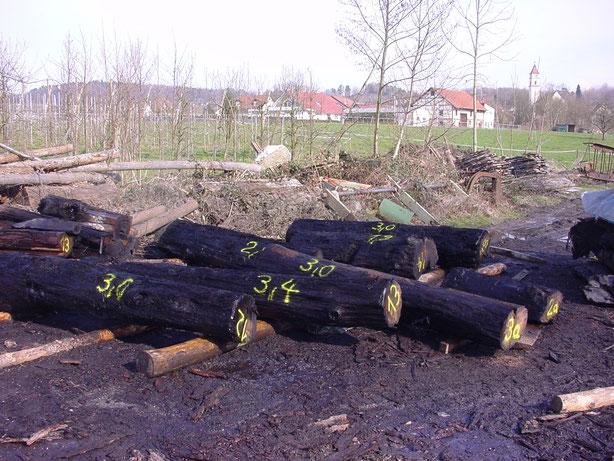 Edle Naturhölzer für Beständig Design Pfeffermühlen im Lager - 5 Jahre lang mindestens getrocknet.