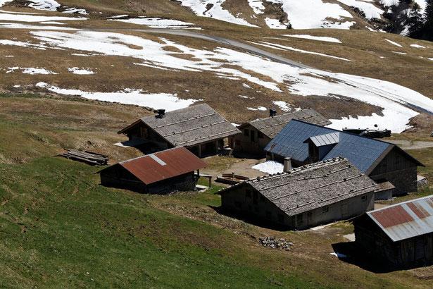 """Les chalets d'alpage du hameau """"le Fenil"""""""