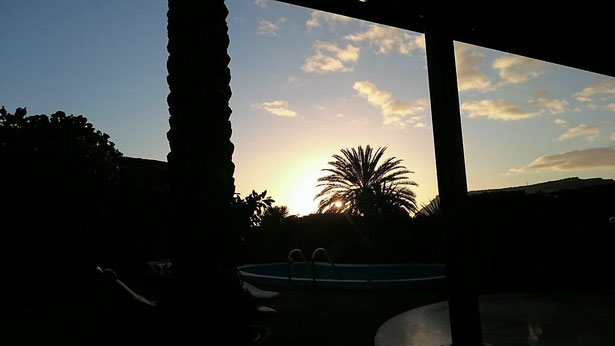 freaky finance, freaky travel, Gran Canaria, Sonnenuntergang, Palme, Pool