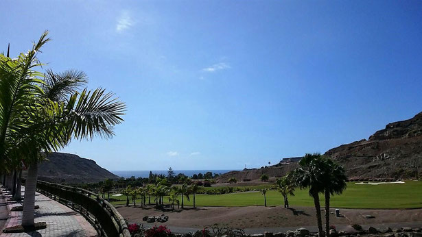 freaky finance, freaky travel, Gran Canaria, Reisebericht, Landschaft, Palme, Golfplatz, Meer am Horizont