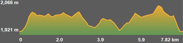 Perfil de la ruta de raquetes de neu Coll de la Creueta