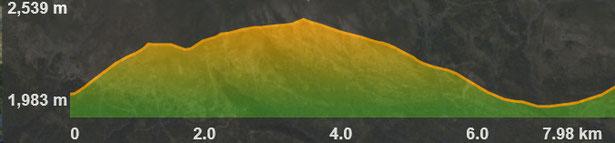 Perfil de la ruta de raquetes Coll de Pal - Tosa d'Alp