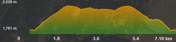 Perfil de la ruta de raquetes - Collada de Toses - Pla de la Bassa - Coll de la Creu de Meians