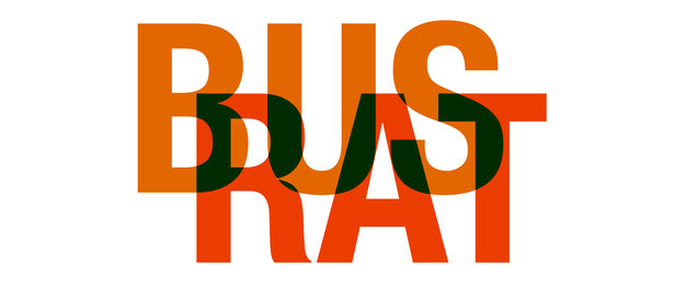 Bus Rat Schulbus Medienpartizipation Demokratie Schule Politik Jugendbeteiligung Politische Bildung