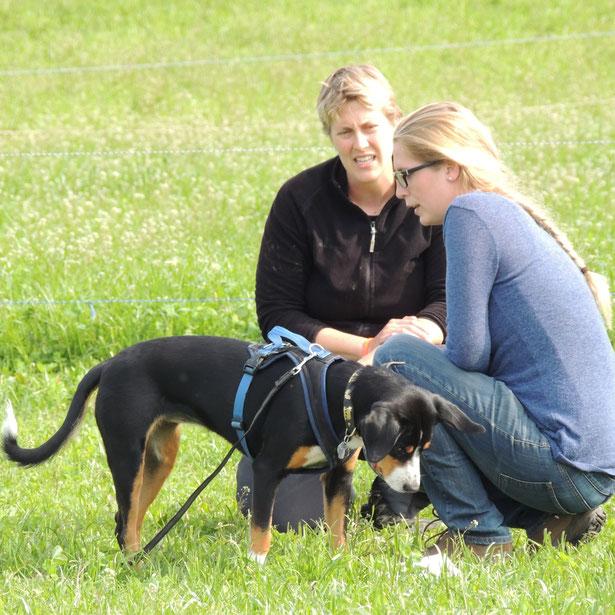 Das eine Rezept für alle gibt es nicht. Und den Weg zur gewünschten Verhaltensänderung gehen Verhaltensberater, Tierhalter und Hund gemeinsam.