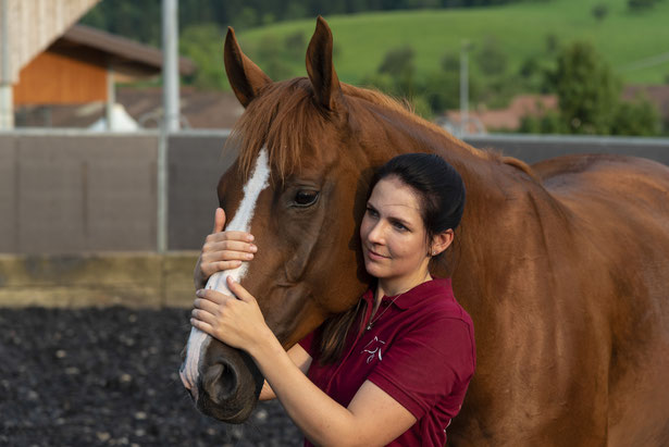 Osteopathie.für.Pferde.Baselland.Pferdeosteopathie.Pferde.Heilen