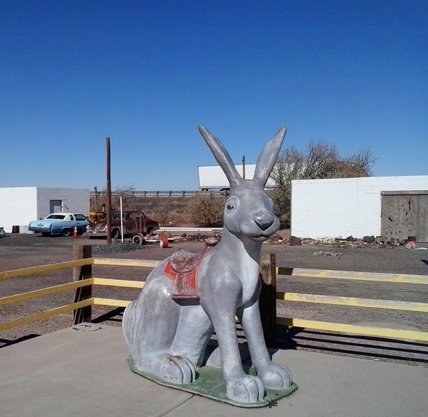 Bild: Jack Rabbit, HDW, Mister T. und der Weiße Büffel, Route 66, Amerika, USA
