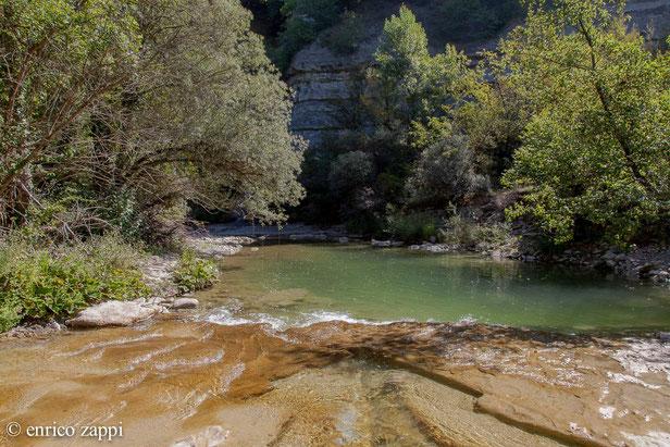 Un angolo di Paradiso Terrestre: lungo il torrente Rabbi alla confluenza con il torrente Fantella.