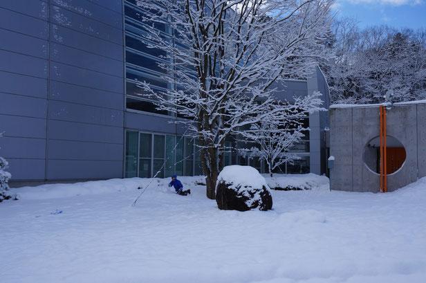 さらさらのパウダースノーで、ふかふかの雪の上をころげまわっていました。