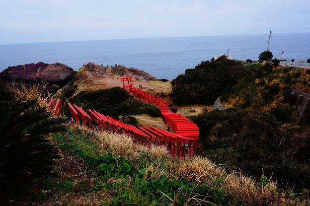 二つ目の絶景は123の赤い鳥居がならぶパワースポット、元乃隅稲荷神社