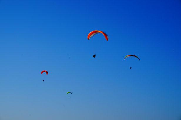 瀬戸内海上空を優雅に飛んでいるパラグライダーを発見。
