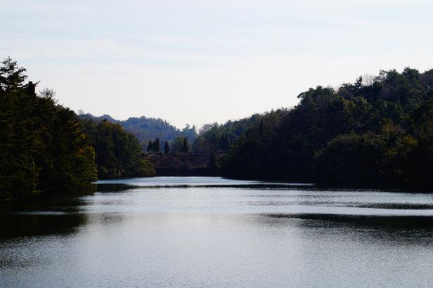 カモ池をあとにして、公園の中をぐる~とお散歩。土の上を歩くのは気持ちいいです。