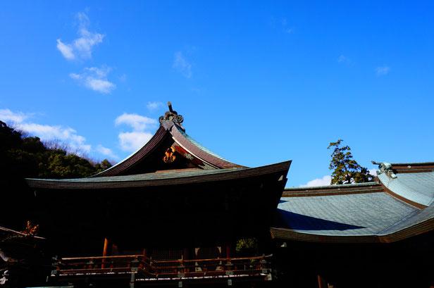 あまりにも青空がきれいなので、屋根ばかり撮影してしまいました。