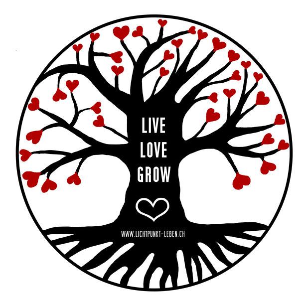 LICHTPUNKT LEBEN, LIVE - LOVE -GROW, FAMILIENSTELLEN IN ELSAU BEI WINTERTHUR