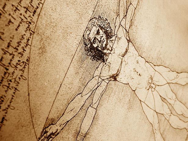 "Leonardo da Vinci, ""L'uomo vitruviano"""