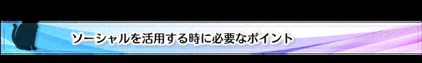 ソーシャル活用,Facebook,ポイント,初心者,藤田和美