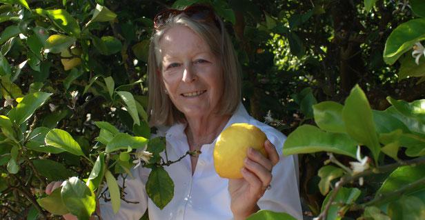 """Dr. Armgard Müller-Kicherer – Kopf, Hand und Herz hinter ZitronenTraum"""" bei der Zitronenernte in Portugal"""