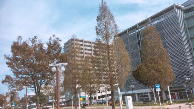 浜松市内2