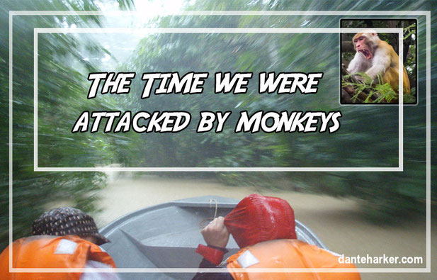 The time we were attached by monkeys - Dante Harker