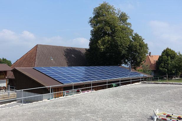 Soltermann Solar GmbH Fraubrunnen - Dekofoto Landwirtschaftsbetrieb