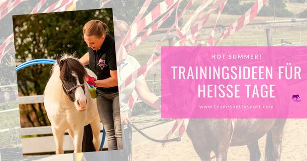 Pferdetraining im Hochsommer: Mit cleverer Bodenarbeit Muskeln aufbauen.