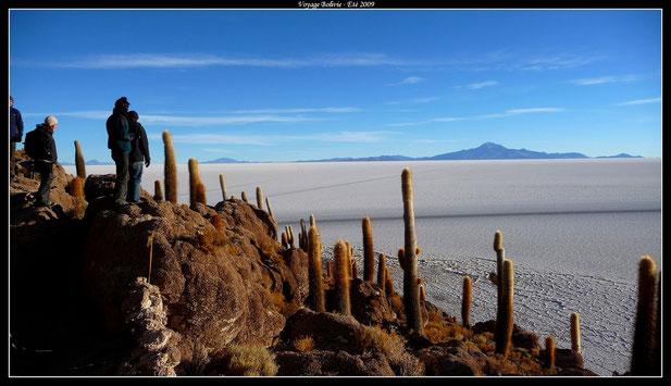 Salar d'Uyuni depuis l'Isla Pescado