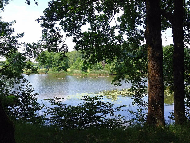 der Bordesholmer See