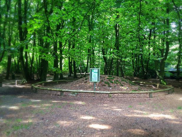 ein Archäologischen Wanderpfad liegt auf dem Weg
